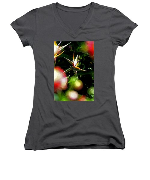 A Paridise Women's V-Neck