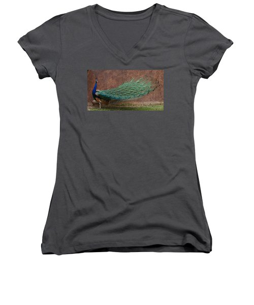 A Peacock Women's V-Neck T-Shirt