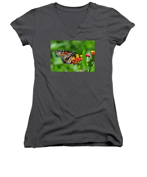 Women's V-Neck T-Shirt (Junior Cut) featuring the photograph A Place To Settle Down by Kathy Baccari