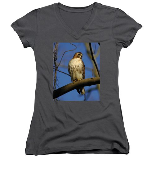 Women's V-Neck T-Shirt (Junior Cut) featuring the photograph A Red Tail Hawk by Raymond Salani III