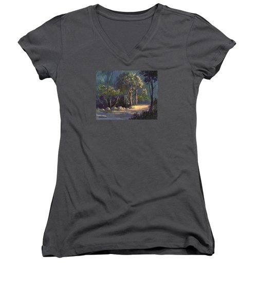 Women's V-Neck T-Shirt (Junior Cut) featuring the painting A Special Place by Michael Humphries