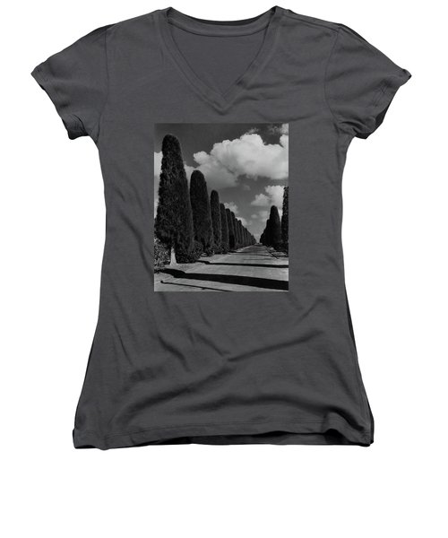 A Street Lined With Cypress Trees Women's V-Neck