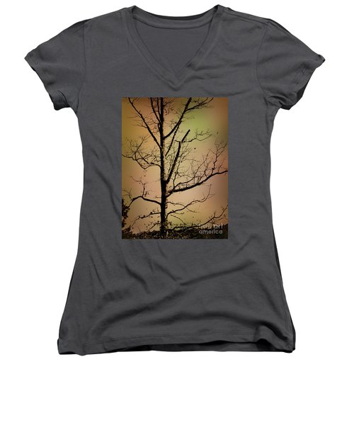 A Tree By The Lake Women's V-Neck T-Shirt