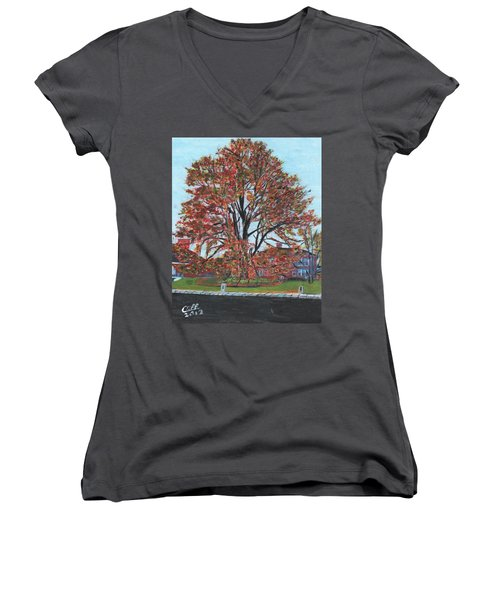 A Tree In Sherborn Women's V-Neck T-Shirt