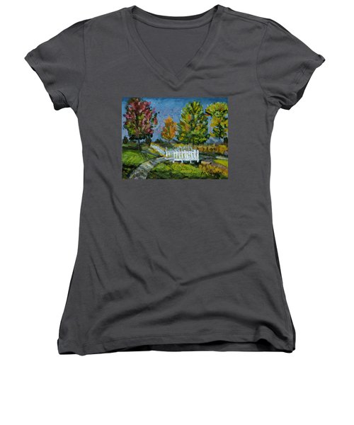 A Walk In The Park Women's V-Neck T-Shirt (Junior Cut) by Michael Daniels