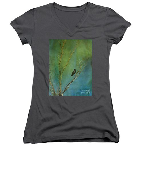 A Watchful Eye Women's V-Neck (Athletic Fit)