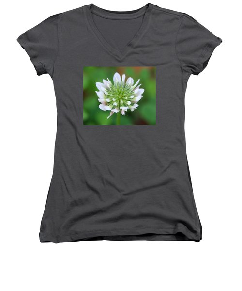 A Weed Women's V-Neck T-Shirt