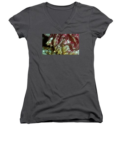 Abstract Carnation Women's V-Neck T-Shirt