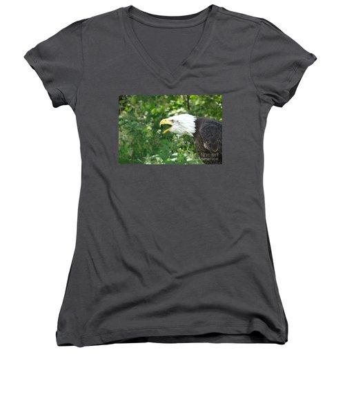 Women's V-Neck T-Shirt (Junior Cut) featuring the photograph Adler Raptor Bald Eagle Bird Of Prey Bird by Paul Fearn