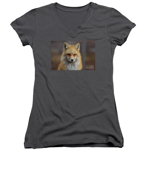 Adorable Red Fox Women's V-Neck (Athletic Fit)