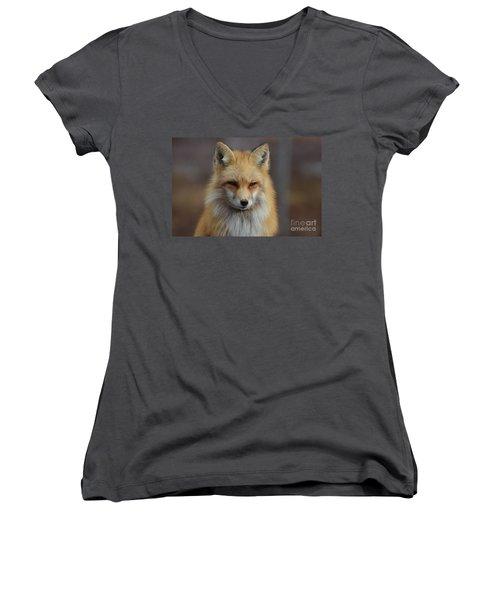 Adorable Red Fox Women's V-Neck T-Shirt (Junior Cut) by DejaVu Designs