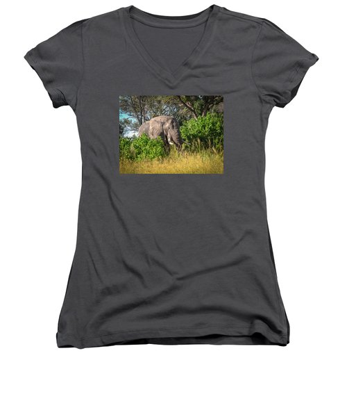 African Bush Elephant Women's V-Neck (Athletic Fit)