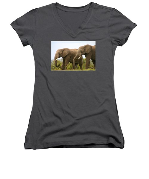 African Elephants Women's V-Neck T-Shirt (Junior Cut) by Menachem Ganon