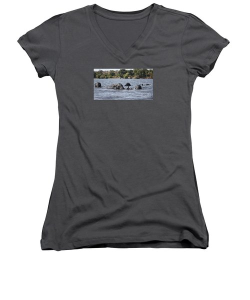 Women's V-Neck T-Shirt (Junior Cut) featuring the photograph African Elephants Swimming In The Chobe River by Liz Leyden