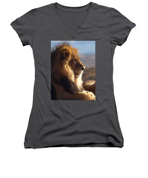African Lion Women's V-Neck T-Shirt