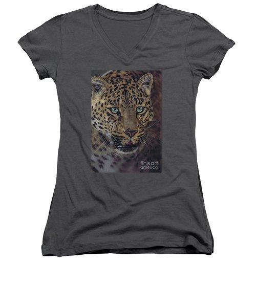 After Dark All Cats Are Leopards Women's V-Neck