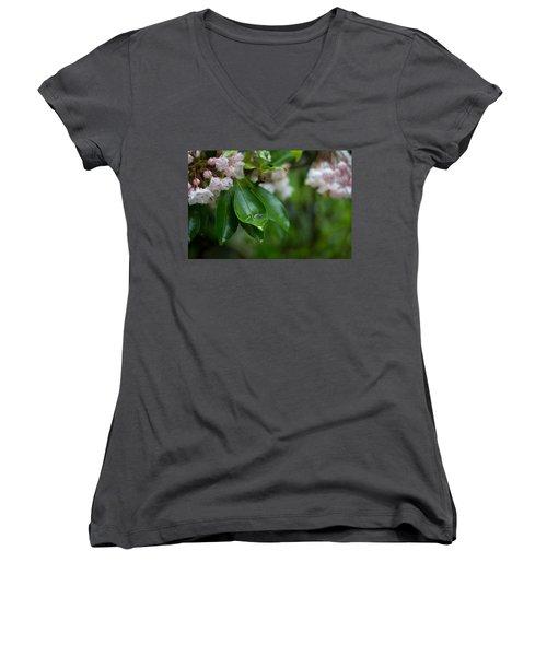 After The Storm Women's V-Neck T-Shirt (Junior Cut) by Patrice Zinck