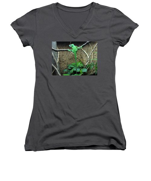 Women's V-Neck T-Shirt (Junior Cut) featuring the photograph Afternoon Workout by Lingfai Leung