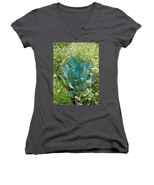 Agave Swaddled In Asters Women's V-Neck T-Shirt