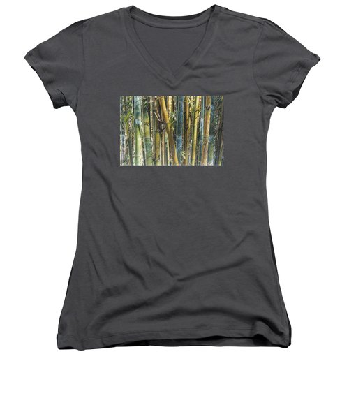 All The Colors Of The Bamboo Rainbow Women's V-Neck