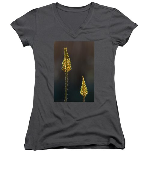 Aloe Plant Women's V-Neck T-Shirt (Junior Cut) by Tam Ryan