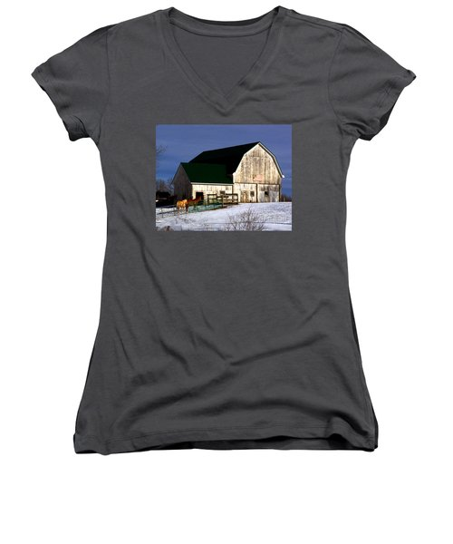 American Barn Women's V-Neck T-Shirt (Junior Cut) by Desiree Paquette