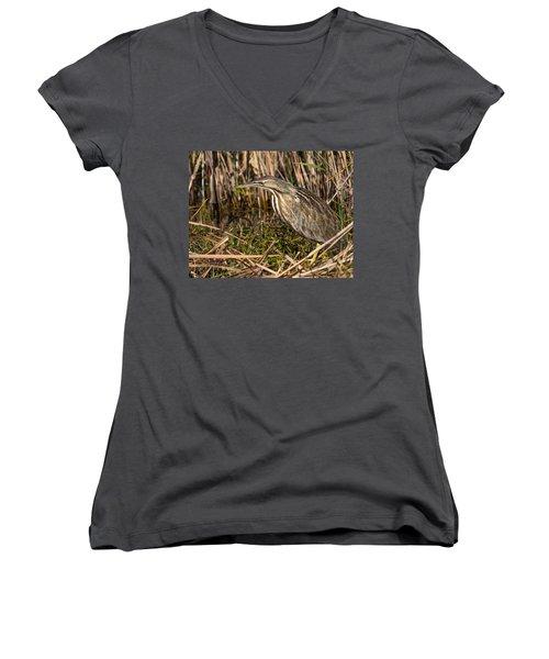 American Bittern Women's V-Neck T-Shirt