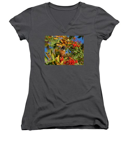 American Robin Women's V-Neck T-Shirt (Junior Cut) by James Peterson
