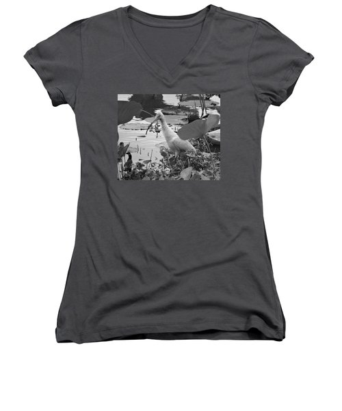 American White Ibis Black And White Women's V-Neck T-Shirt (Junior Cut) by Dan Sproul