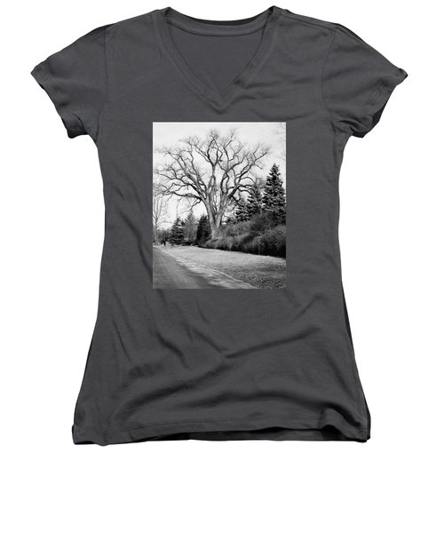 An Elm Tree At The Side Of A Road Women's V-Neck