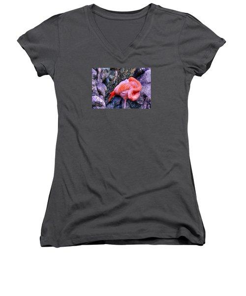 Animal 1 Women's V-Neck (Athletic Fit)