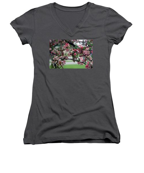 Women's V-Neck T-Shirt (Junior Cut) featuring the photograph Apple Blossom Time by Kay Novy