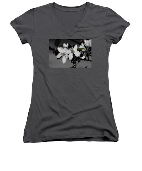 Apple Blossoms Women's V-Neck