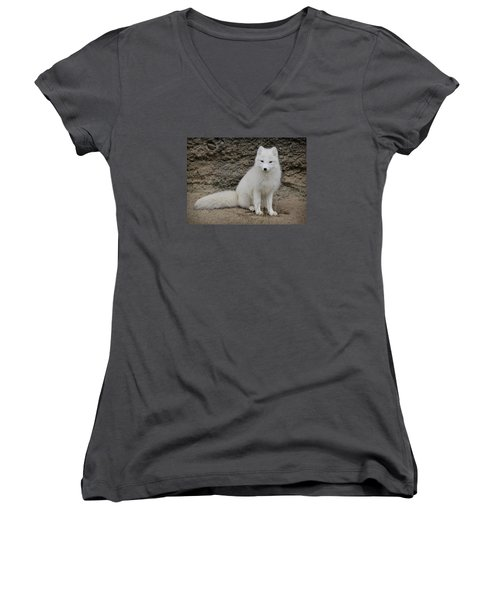 Arctic Fox Women's V-Neck T-Shirt (Junior Cut) by Athena Mckinzie