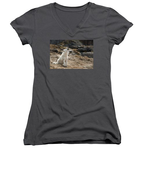 Women's V-Neck T-Shirt (Junior Cut) featuring the photograph Arctic Wolf Howling by Wolves Only