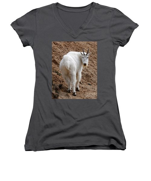Are You Following Me Women's V-Neck T-Shirt (Junior Cut) by Vivian Christopher
