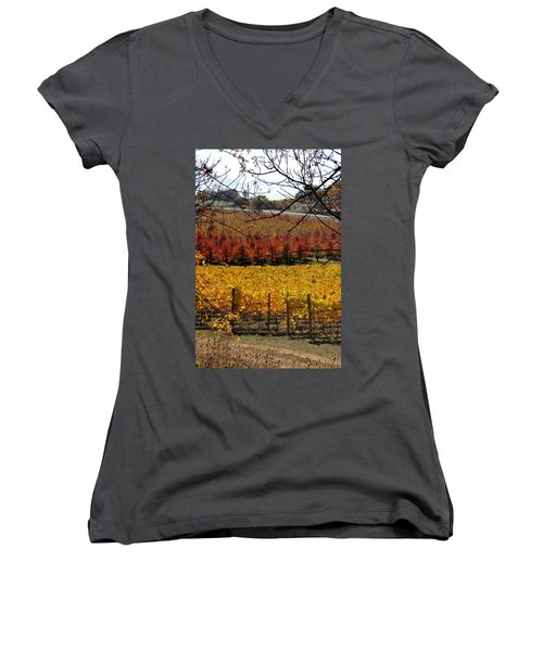 Around And About In My Neck Of The Woods Series 28 Women's V-Neck (Athletic Fit)