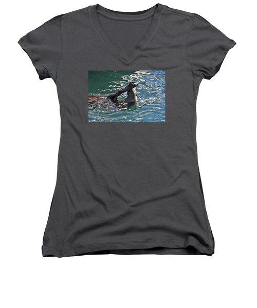Artsy Sea Lion Women's V-Neck T-Shirt (Junior Cut)