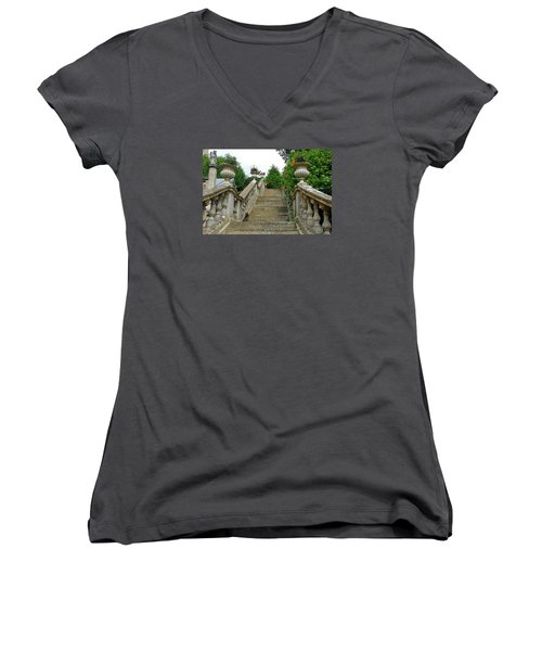 Ascending Garden Women's V-Neck T-Shirt