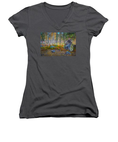 Women's V-Neck T-Shirt (Junior Cut) featuring the photograph Aspen Grove by Jim Thompson