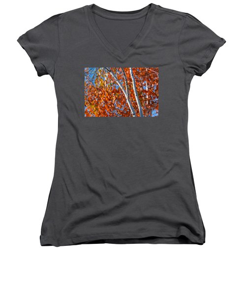 Women's V-Neck T-Shirt (Junior Cut) featuring the photograph Aspen by Sebastian Musial