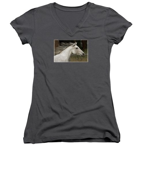 At A Full Gallop Women's V-Neck T-Shirt (Junior Cut) by Wes and Dotty Weber