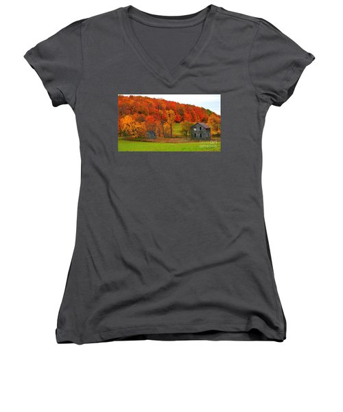Women's V-Neck T-Shirt (Junior Cut) featuring the photograph Autumn Abandoned by Terri Gostola