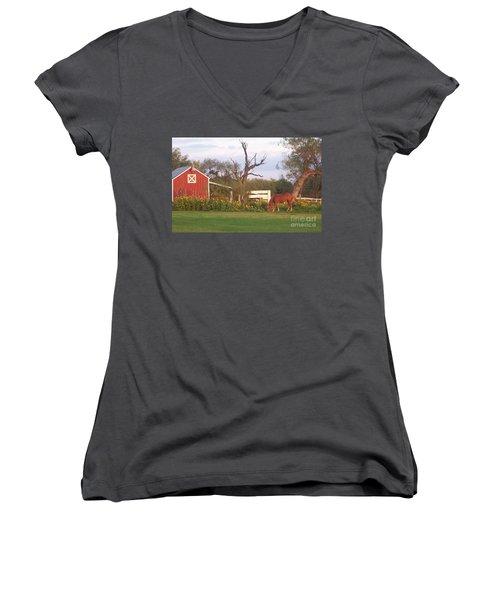 Autumn Abundance Women's V-Neck T-Shirt