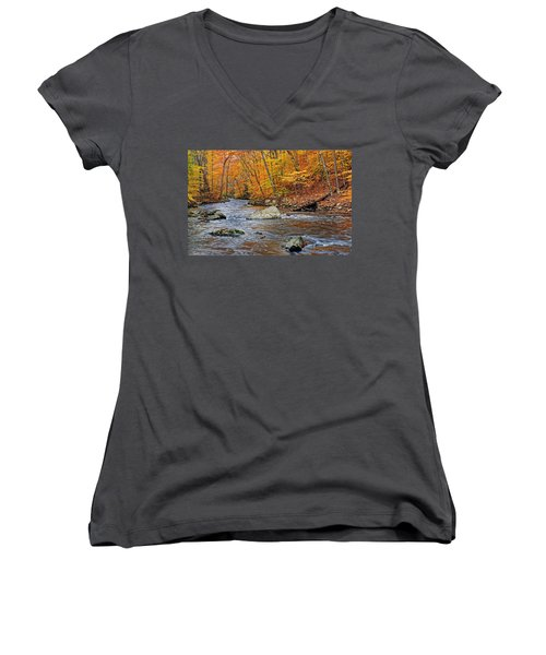 Autumn At The Black River Women's V-Neck T-Shirt (Junior Cut) by Dave Mills
