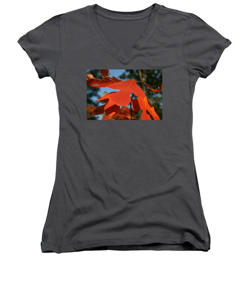 Women's V-Neck T-Shirt (Junior Cut) featuring the photograph Autumn Attention by Neal Eslinger