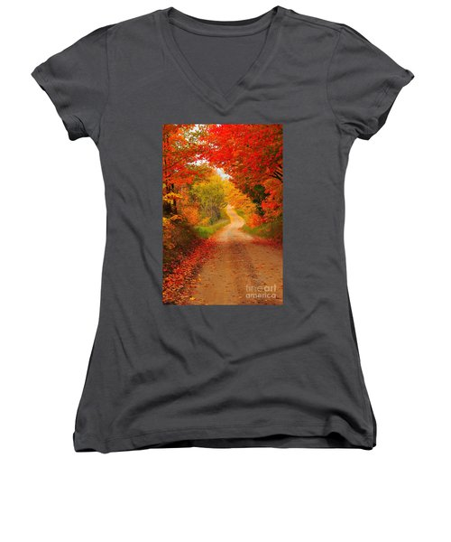 Autumn Cameo Women's V-Neck T-Shirt (Junior Cut) by Terri Gostola