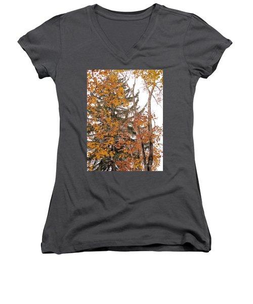 Women's V-Neck T-Shirt (Junior Cut) featuring the photograph Autumn Gold by Sandy McIntire