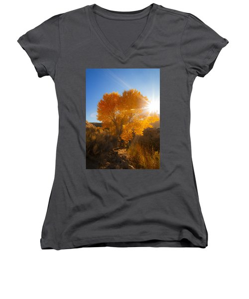 Autumn Golden Birch Tree In The Sun Fine Art Photograph Print Women's V-Neck (Athletic Fit)