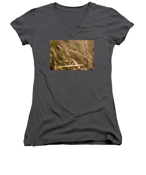 Autumn Grasses Women's V-Neck T-Shirt (Junior Cut) by Linda Bianic